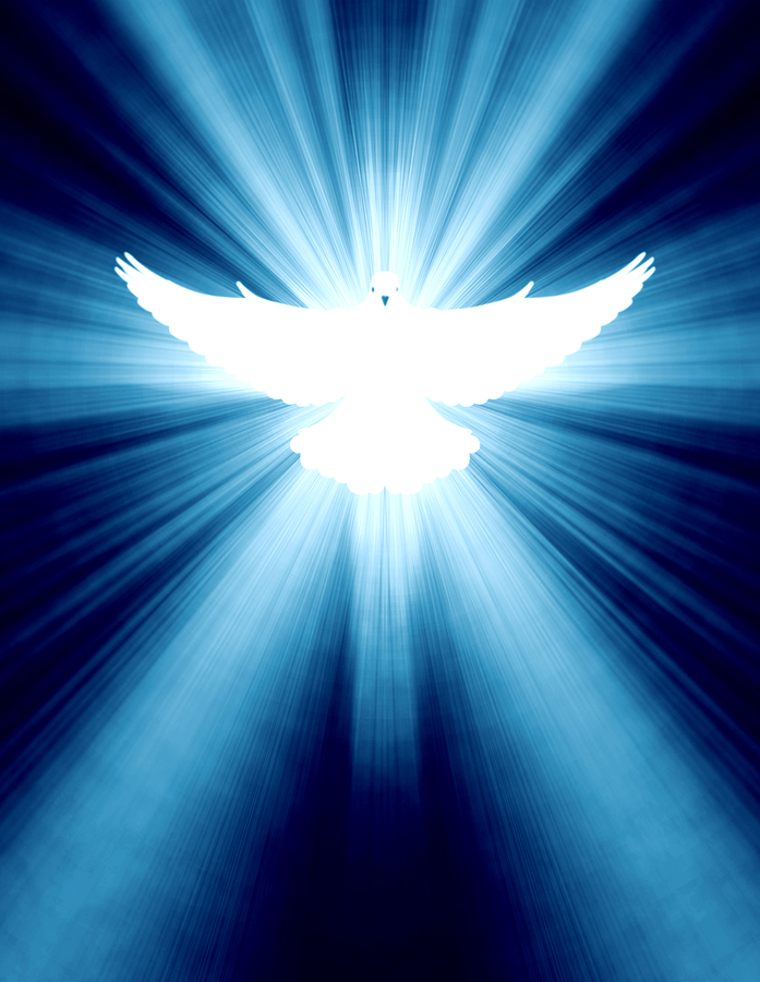 bigstock-shining-dove-with-rays-on-a-da-29605064